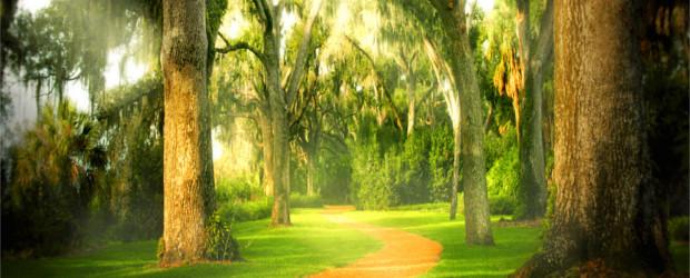 Temer ao Senhor é o primeiro passo rumo à sabedoria. O temor do Senhor é o portal da felicidade. O texto supra trata de cinco privilégios daqueles que temem ao […]