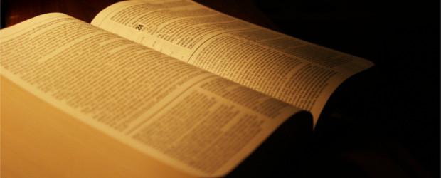 O brado da Reforma Protestante ecoou de dentro da Escritura. A Reforma não foi a abertura de um novo caminho religioso, mas uma volta às antigas veredas. Não foi uma […]