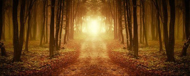A segunda vinda de Cristo será o acontecimento mais auspicioso da história. Ele virá para fechar as cortinas da história, julgar as nações e reinar com sua igreja pelos séculos […]